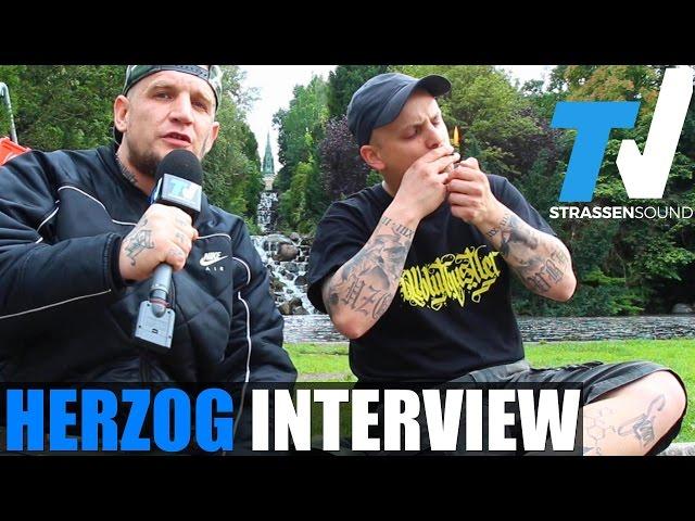 HERZOG Interview: Vollbluthustler, Berlin Kreuzberg, Kiffen, Said, MC Bogy, Mosh36, PTK, Schulsystem