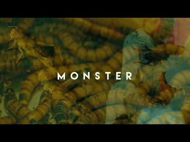 Hanybal - Monster