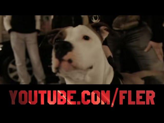 Silla, Fler, Jalil - Gangster Rapper