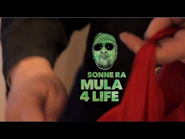 Sonne RA - Mula 4 Life (Videosnippet)