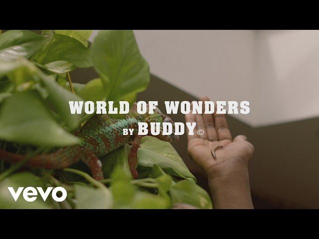 Buddy, Kaytranada - World of Wonders