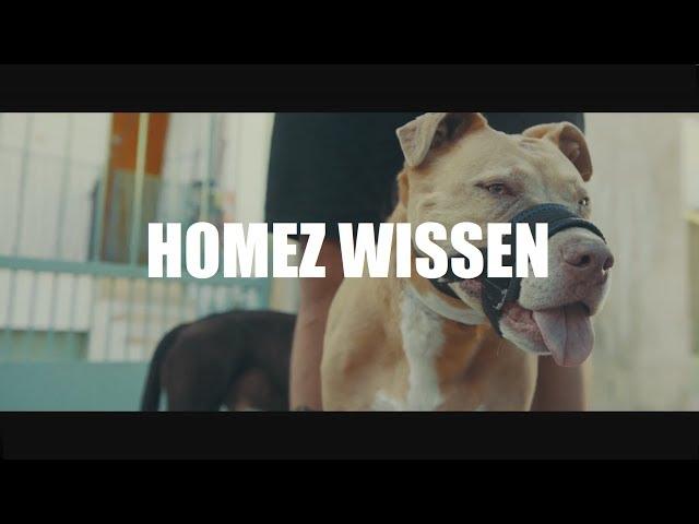Cashmo - Homez Wissen