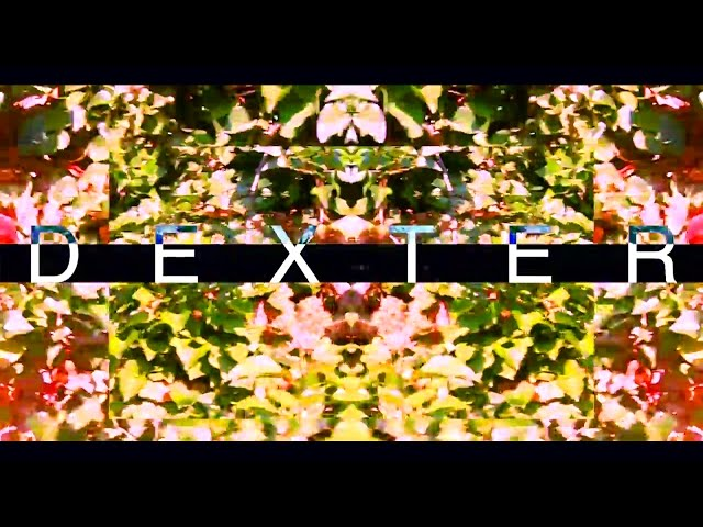 Dexter - Somebody New
