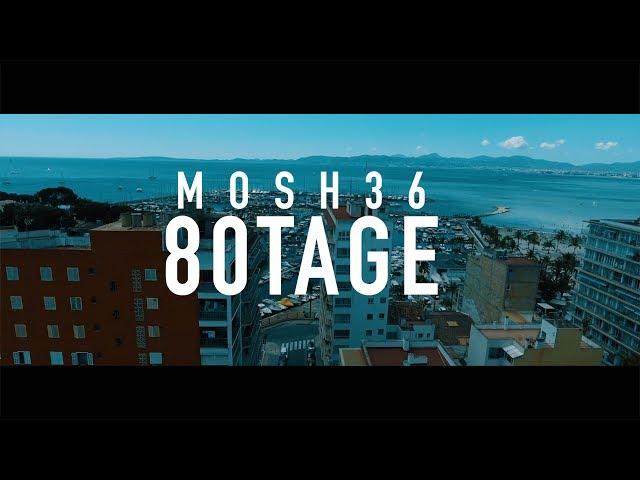 Mosh36 - 80 Tage