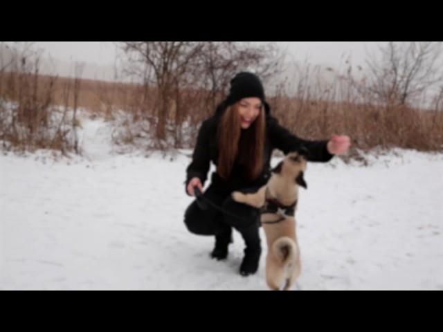 NICONE - ICH LIEBE DICH (HD) prod. Dj Proof