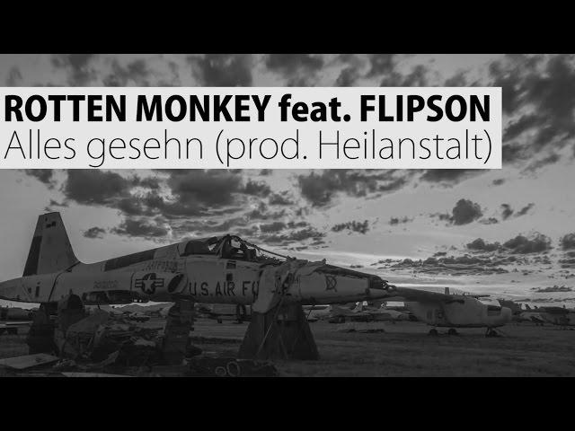 Rotten Monkey - Alles gesehn