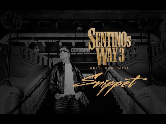Sentino X DJ Access - Sentinos Way 3 Snippet (17.03.17)
